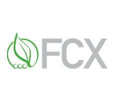 FCX-DNA