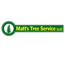 Matts Tree Service