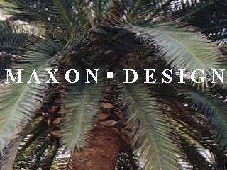 Maxon Design