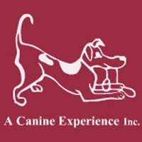 A Canine Experience $180 Doggie Day Care 10 Pack Certificate