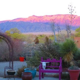 Chocolate Turtle Bed & Breakfast  in Corrales, New Mexico