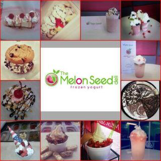 The Melon Seed Deli & Frozen Yogurt