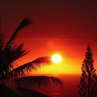 Hawaii Villa- Kailua/Kona