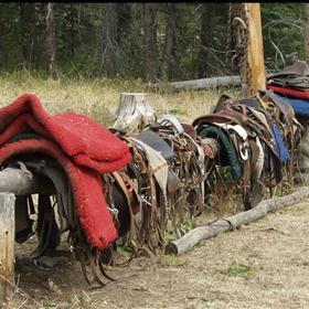 Eustance Pack and Tack offers: North Fork of the Blackfoot