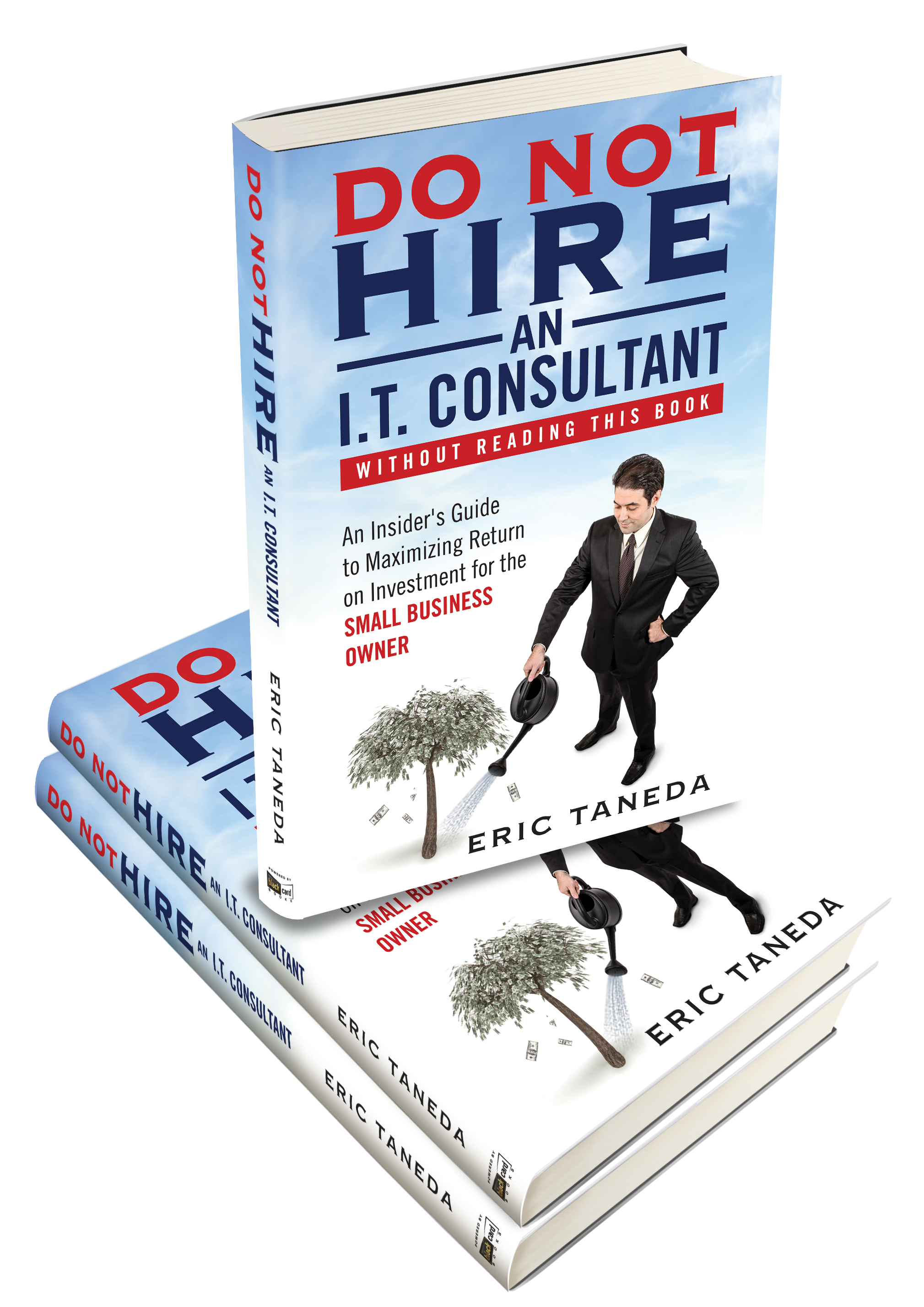 Do Not Hire an I.T. Consultant (Without Reading This Book)