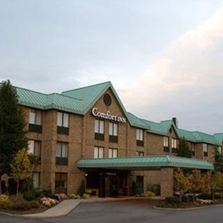 Comfort Inn in Utica, MI