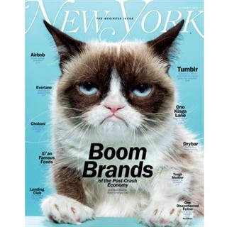 New York Magazine Four Year  Subscription