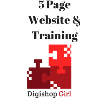 5 Page Website & Training