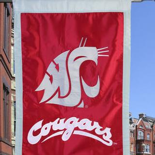 Washington State Cougars 28'' x 44'' Applique Flag - Crimson