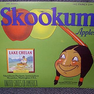 Blue Skookum Apples Indian Fisherman Chelan Authentic Crate Label