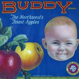 Buddy Brand Golden and Red Apples Child's Face Crate Label Vintage