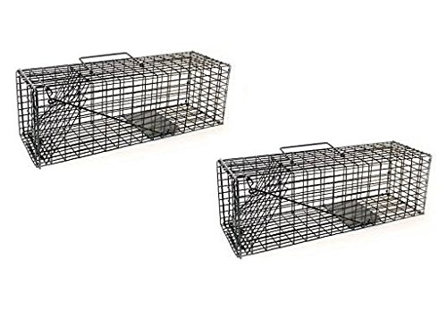 "2CH603 Animal Trap 16""x5""x5"" for Squirrels Chipmunks Rabbits Rats and Any Small"