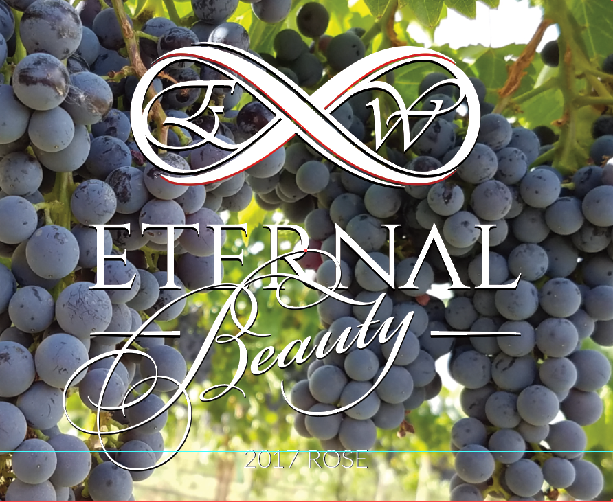 12 Pack 2017 Eternal Wine Eternal Beauty Rose