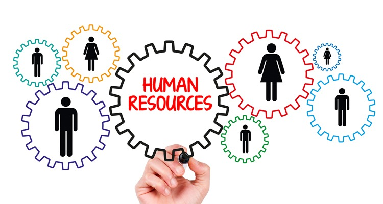 Human Resources - Silver