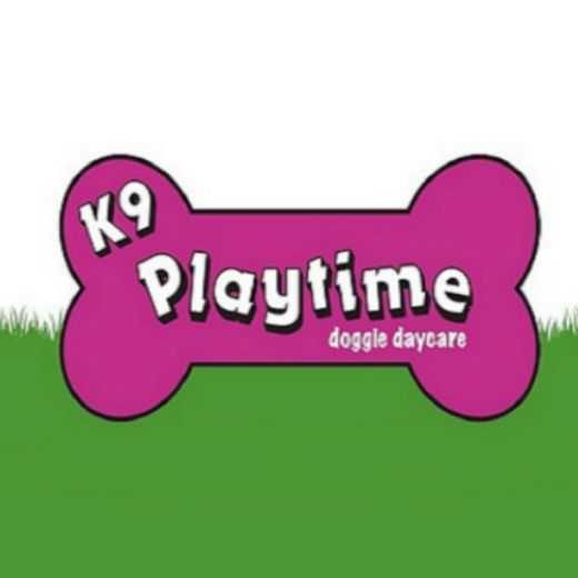 K9 Playtime Overnight Care, Package of 10