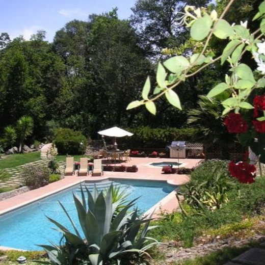 Sonoma Wine Country Estate Vacation Rental Home Over Thanksgiving!!!