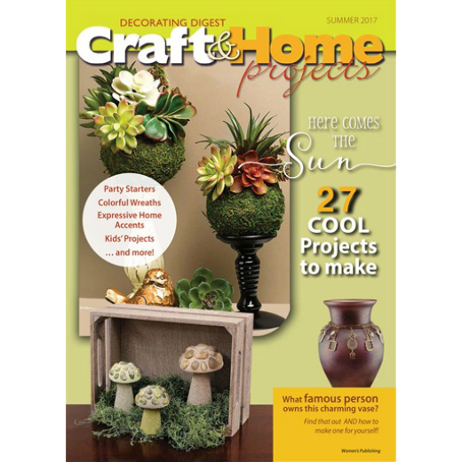 Craft & Home Projects (24 Issues)
