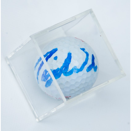 Autographed Tiger Woods Golf Ball