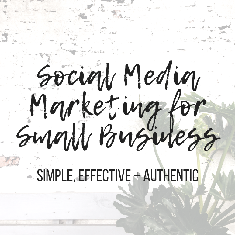 Social Media Marketing for Small Business: Online Course Bundle