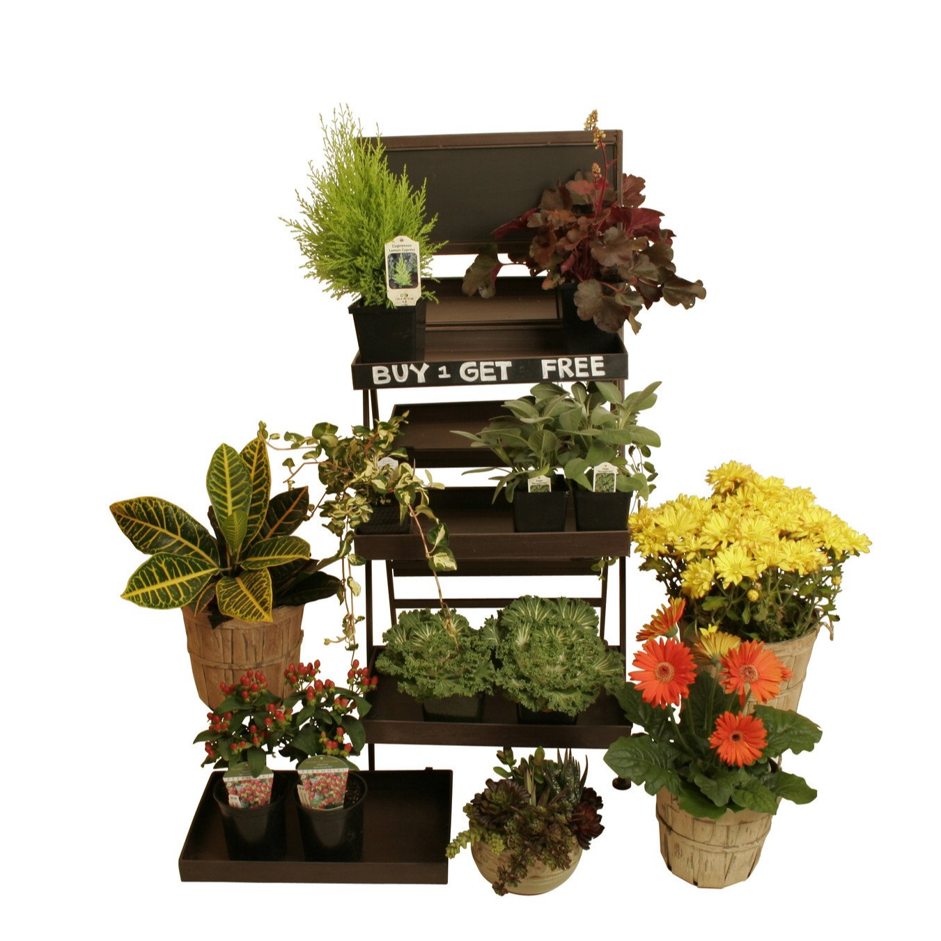 Multi-Tiered Folding Display Ladder w/ Chalkboard (3 and 5 tier options available)