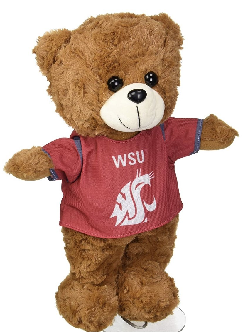 WSU Large Fuzzy Uniform Bear
