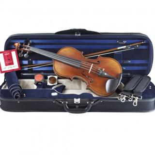 This is a picture of a Giuliani Violin Outfit from Kennedy Violins