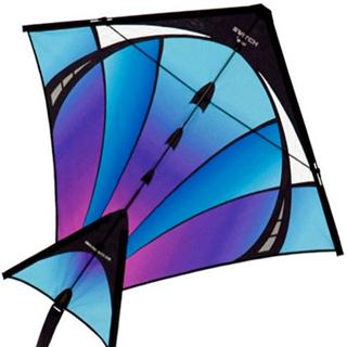 Switch Single Line Kite | Cold Fusion